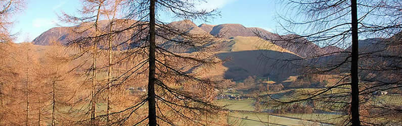 Looking through the trees towards Buttermere village, Grasmoor and the Coldale Fells